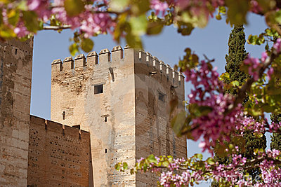 Castle wall surrounded by flowers