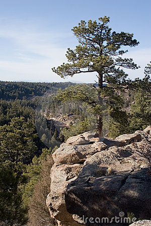 Free Castlewood Canyon 3 Royalty Free Stock Image - 564546