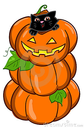 Cat and 3 pumpkins vector