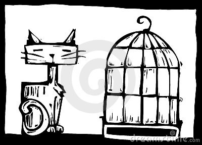 Cat and Birdcage
