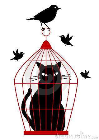 Cat in birdcage,