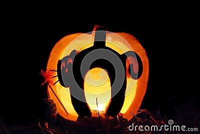 Cat carving in pumpkin