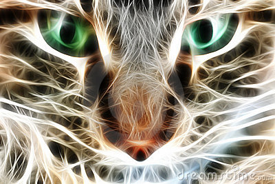 Cat closeup rendered with light streaks or electri