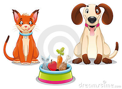 Cat and Dog with food.