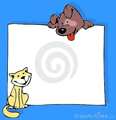 Cat dog and poster in color