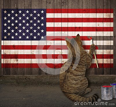 Free Cat Draws The American Flag Stock Photos - 119680633