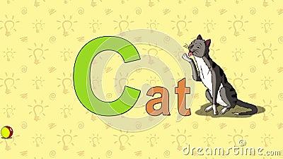 Cat. English ZOO Alphabet - letter C stock video