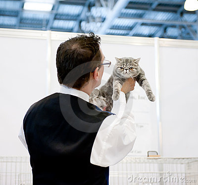 Cat exhibition Editorial Photo