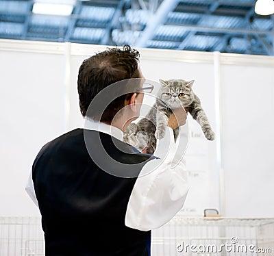 Cat exhibition Editorial Photo