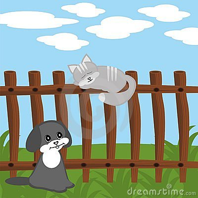 Cat on fence and dog