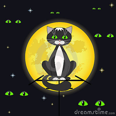 Cat and full moon.