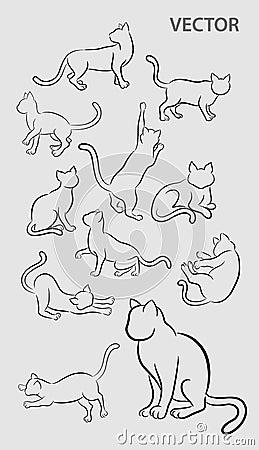 Cat Gesture Sketches