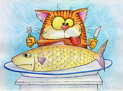 Cat is going to eat fish