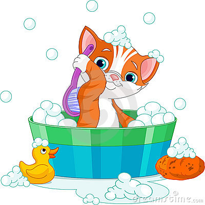 Free Cat Having A Bath Royalty Free Stock Photography - 17083837