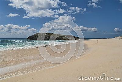 Cat Island Shoreline