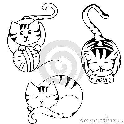 Cat leisure