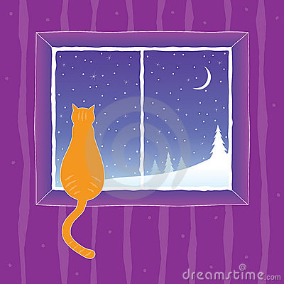 Free Cat Looking Into The Window Royalty Free Stock Photos - 12420088