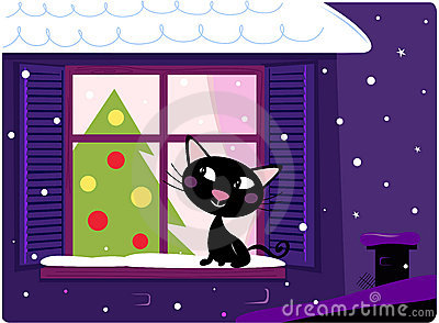 Cat looking through window, christmas tree