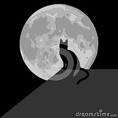 Cat in the moonlight