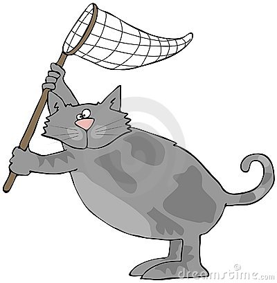 Cat With A Net