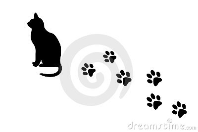 Cat and  paw prints