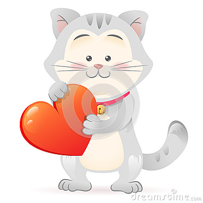 Cat pet  holding heart