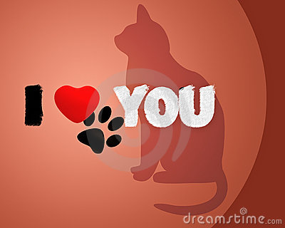 Cat with phrase i love you