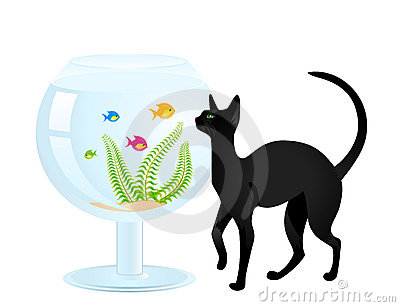 Cat Plays With A Small Fish Royalty Free Stock Images - Image: 11070099