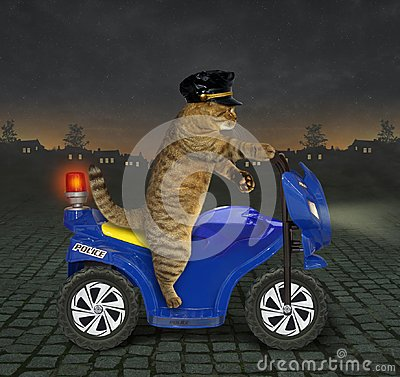 Free Cat Policeman On A Motorbike 2 Stock Image - 122399801