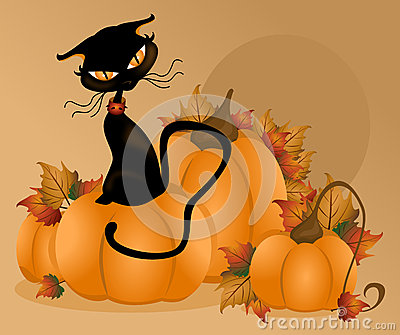 Cat Pumpkin Background