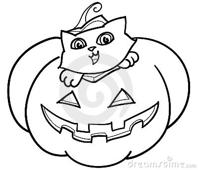 Cat and pumpkin bw