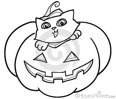 Cat in Jack o  Lantern vector