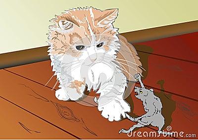 A cat and a rat