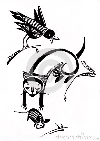 Cat and  raven