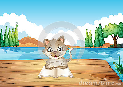 A cat reading a book at the port