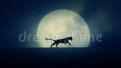 Cat Running on a Rising Full Moon Background stock footage