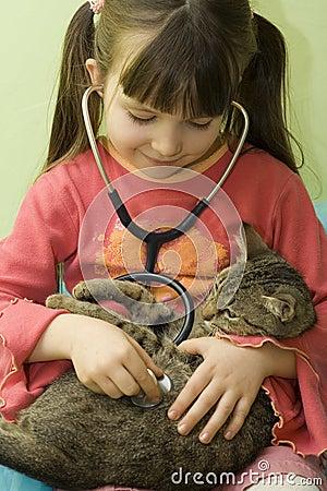 Cat s doctor