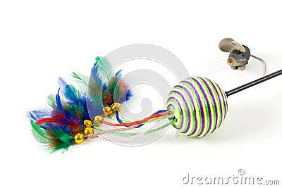 Cat s toys