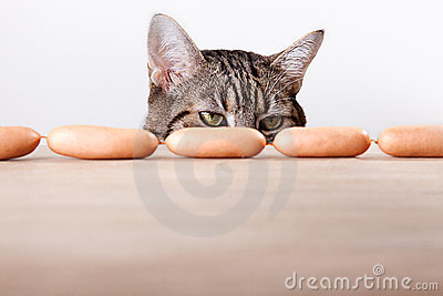Cat and Sausages