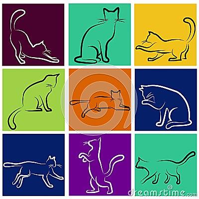 Cat series