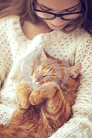 Free Cat Sleeping Royalty Free Stock Photos - 51327168