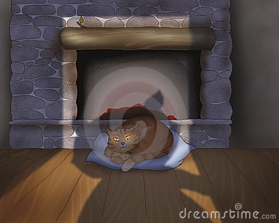 Cat sleeping near the fire place