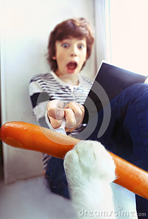 Free Cat Stealing Sausage From Reading Boy Stock Image - 78105831