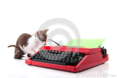 Cat with typewriter