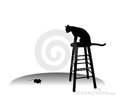 Cat Watching A Mouse on Stool