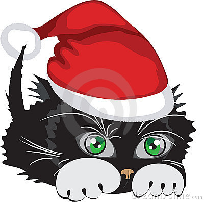 Cat wearing a Santa Claus hat