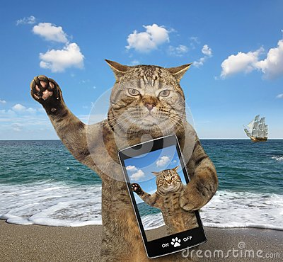 Free Cat With A Cell Phone Stock Photos - 121770253