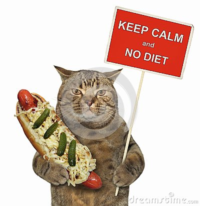 Free Cat With A Funny Sign And A Hot Dog 2 Stock Photography - 122529562