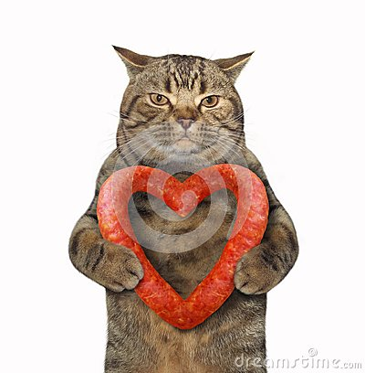 Free Cat With A Sausage Heart 2 Stock Photos - 122262943