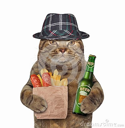 Free Cat With Beer And Sausage Stock Photography - 123565712